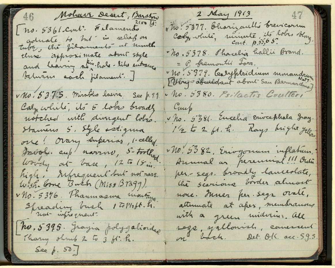 Jepson Field Book 27_47
