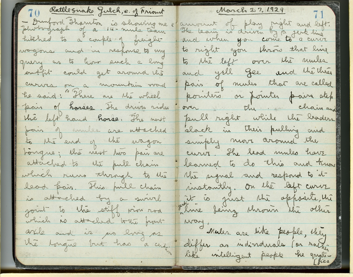 Jepson Field Book 49_70